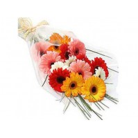 Mixed Gerberas flat bunch