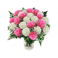 pink N WHITE CARNATION BUNCH