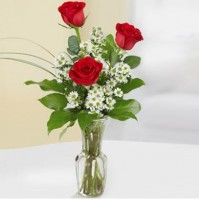 3 red roses in the glass vase