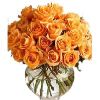 Bunch of 21 Stems of Orange Roses