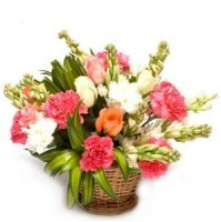 Small Basket of Carnation & Roses
