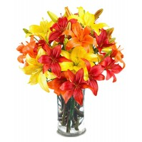 arrangement of Asiatic lilies in a glass vase.