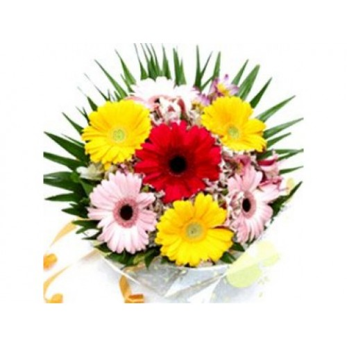 beautiful mix gerberas bunch